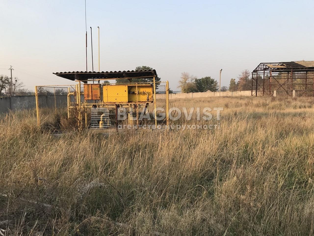 Имущественный комплекс, M-36413, Ленина, Лебедевка (Вышгородский) - Фото 23