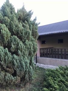 House Zazymia, D-35599 - Photo 5