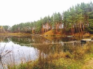 Дом Апрельская, Лычанка, P-26868 - Фото 20