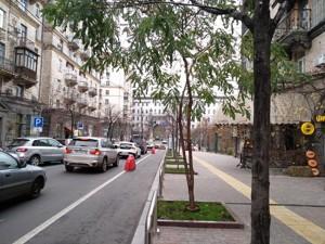 Квартира Пушкинская, 5, Киев, P-26960 - Фото3