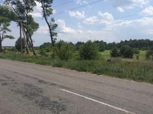 Land Bohdanivka, R-30351 - Photo