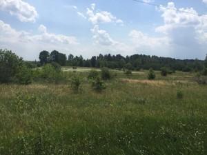 Земельна ділянка Богданівка (Броварський), R-30351 - Фото3
