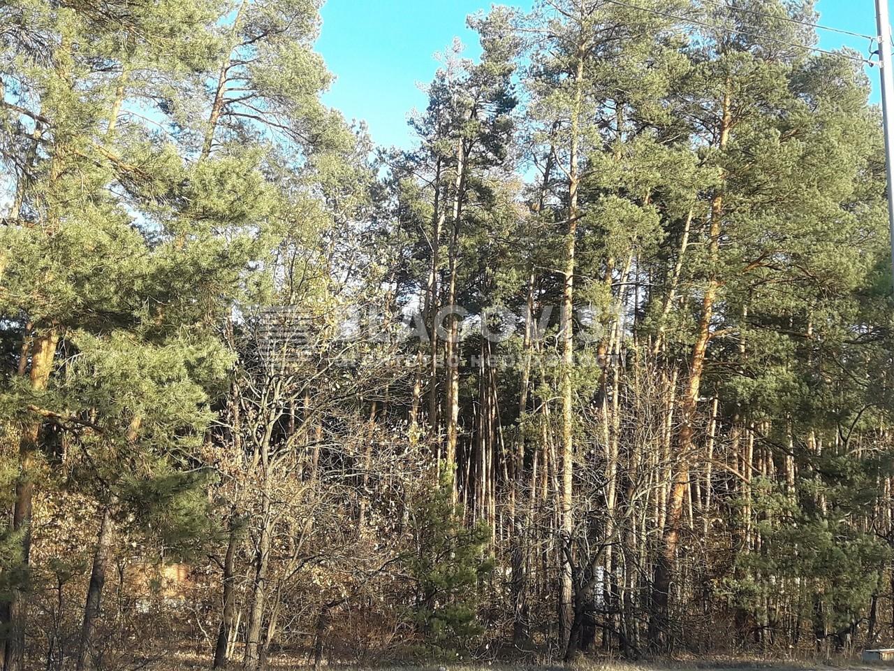 Земельный участок M-36356, Киевская, Козин (Конча-Заспа) - Фото 3