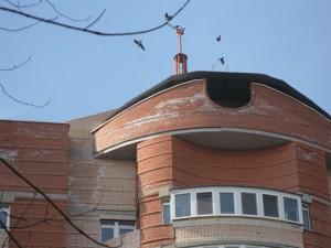 Нежитлове приміщення, Жукова Маршала, Київ, Z-1124919 - Фото 5