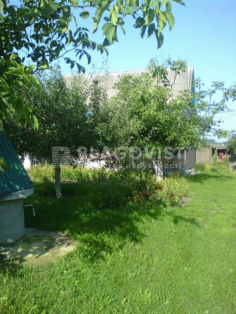 Дом P-27565, Щорса, Ярошовка - Фото 6
