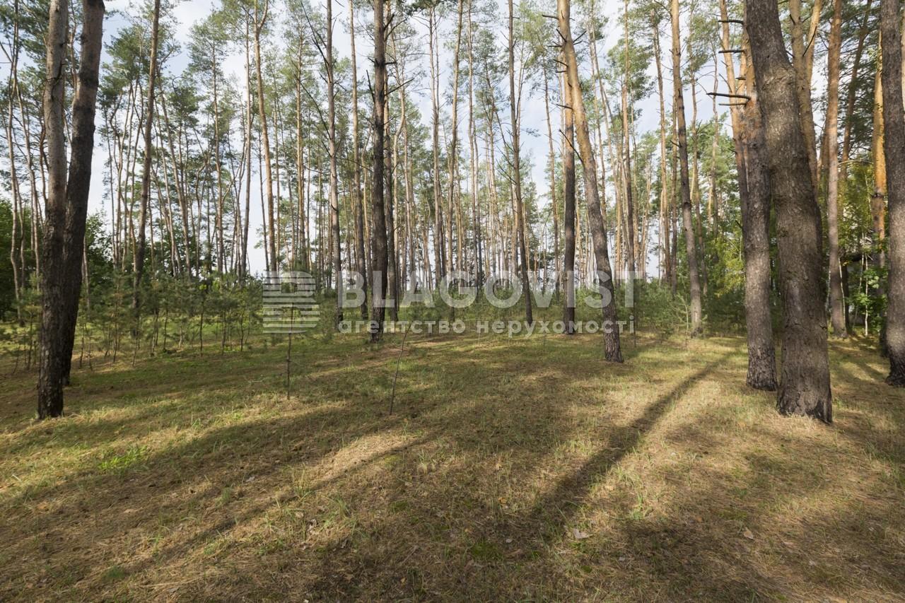 Дом E-39408, Березовка - Фото 44