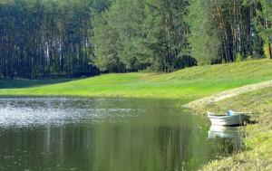 Земельный участок Лишня, M-34764 - Фото 4
