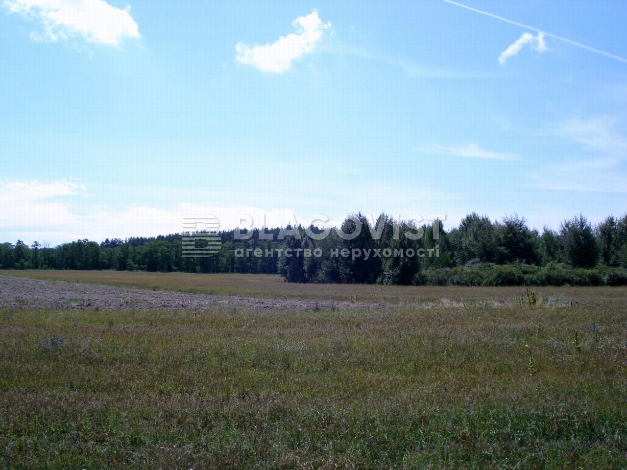 Земельный участок M-17306, Летки - Фото 1