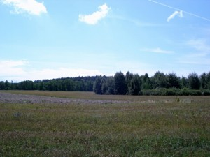 Land Litky, M-17306 - Photo
