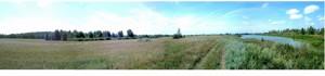 Land Litky, M-17306 - Photo 4
