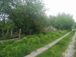 Земельный участок P-27984, Хмельницкого Б., Вита-Почтовая - Фото 4