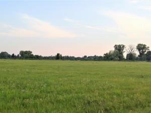 Земельна ділянка Погреби (Броварський), R-33500 - Фото2