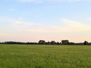 Земельный участок Погребы (Броварской), R-33500 - Фото3