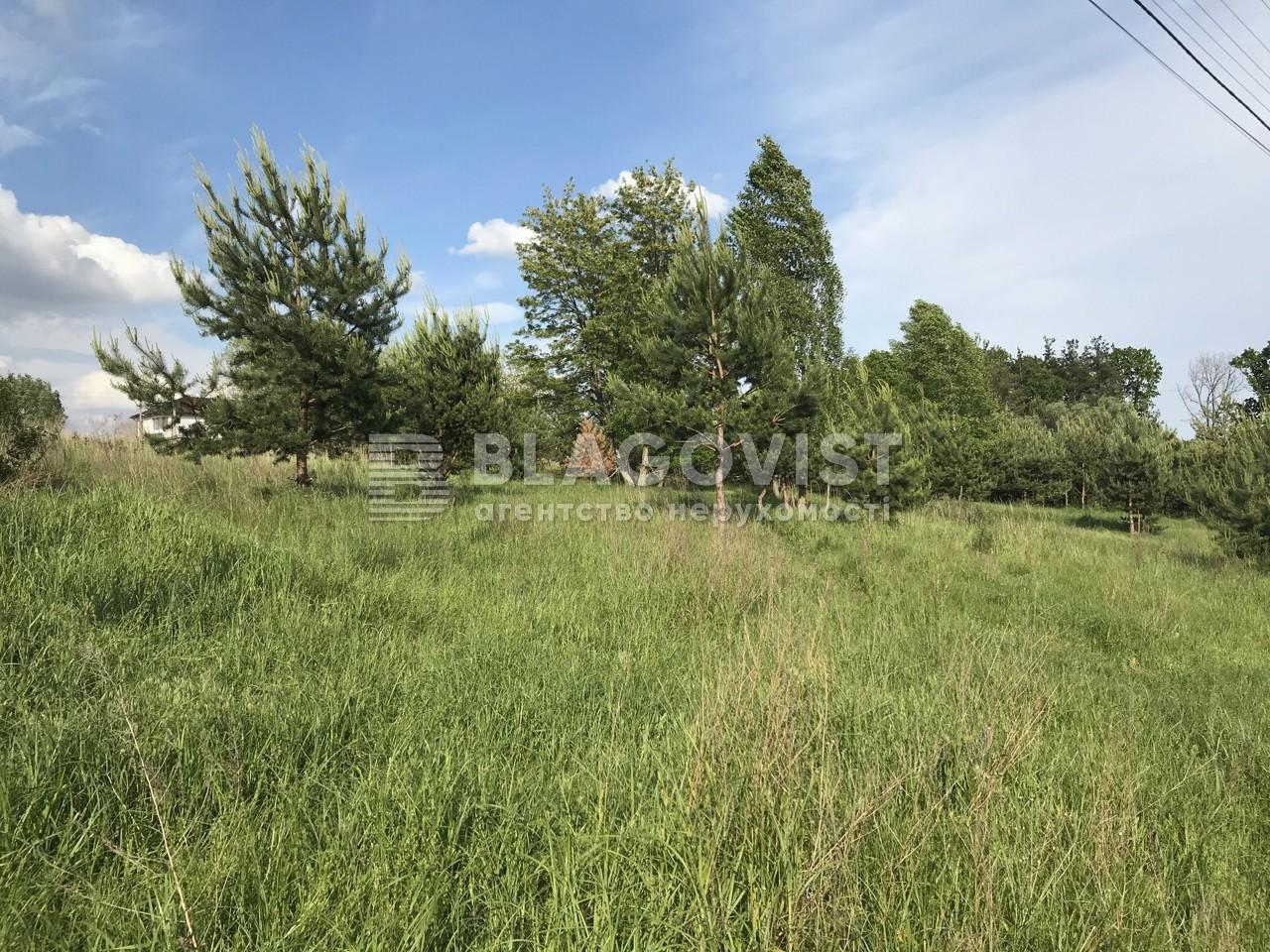 Земельный участок C-107672, Лесная, Юровка (Киево-Святошинский) - Фото 2