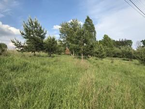 Земельный участок Лесная, Юровка (Киево-Святошинский), C-107672 - Фото 2