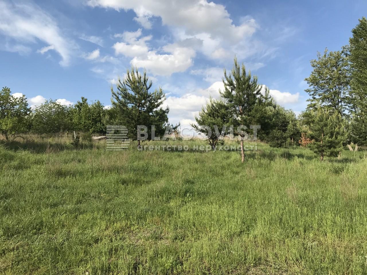 Земельный участок C-107672, Лесная, Юровка (Киево-Святошинский) - Фото 3