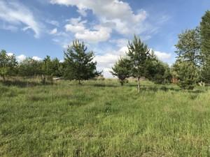 Земельный участок Лесная, Юровка (Киево-Святошинский), C-107672 - Фото 3