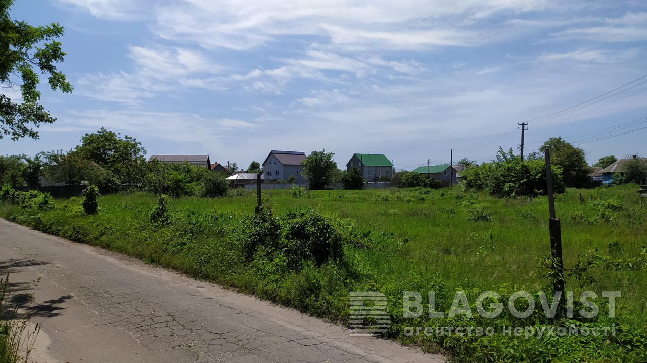 Земельный участок E-39624, Млинная (Воровского), Киев - Фото 1