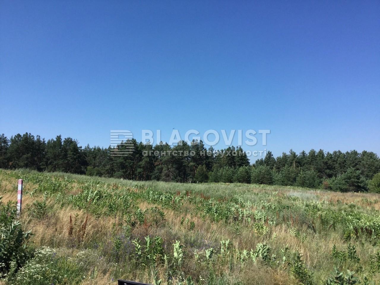 Земельный участок R-33731, Гореничи - Фото 4
