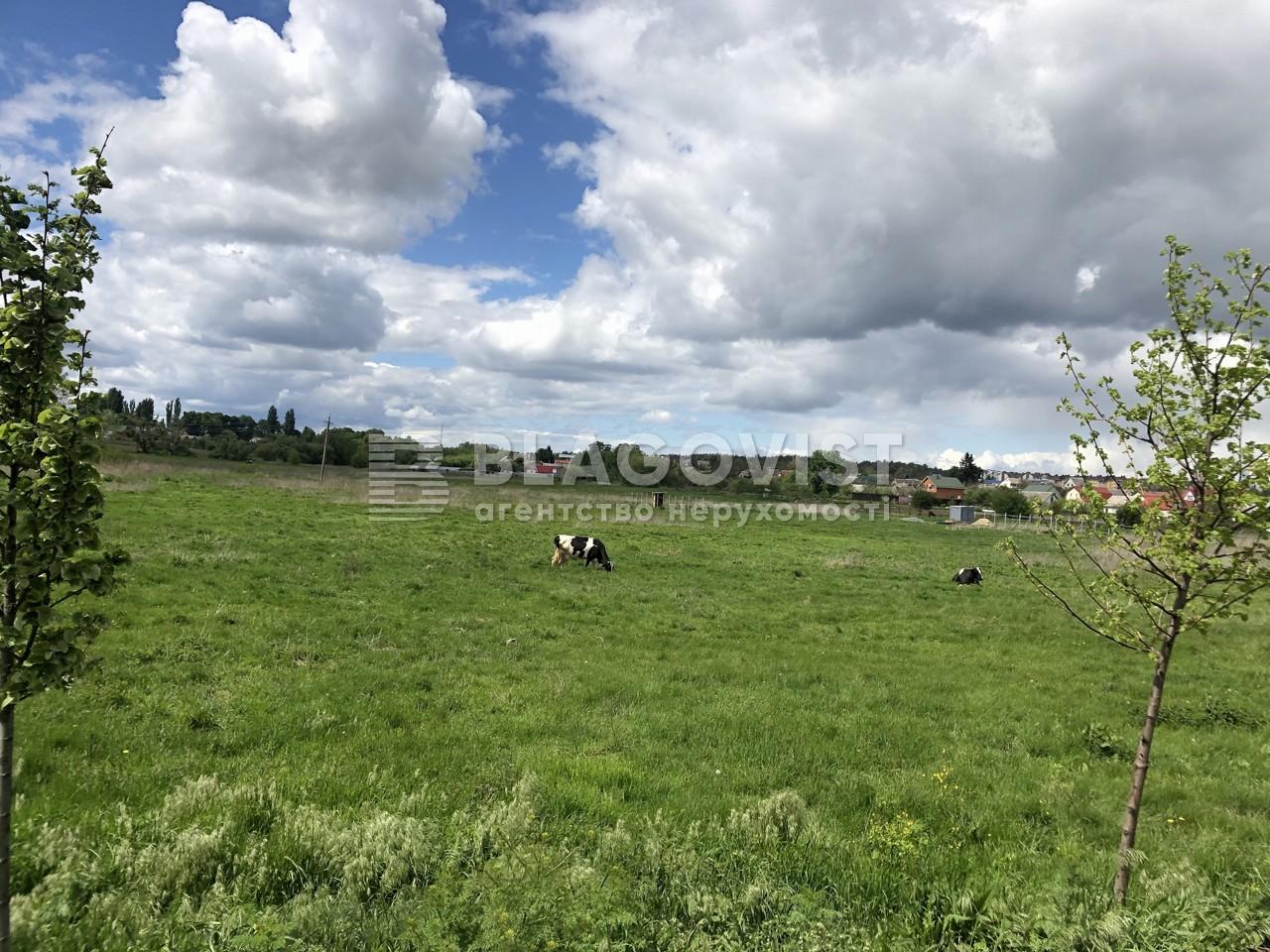 Земельный участок C-107755, Станция Бобрик, Шевченково (Броварской) - Фото 3