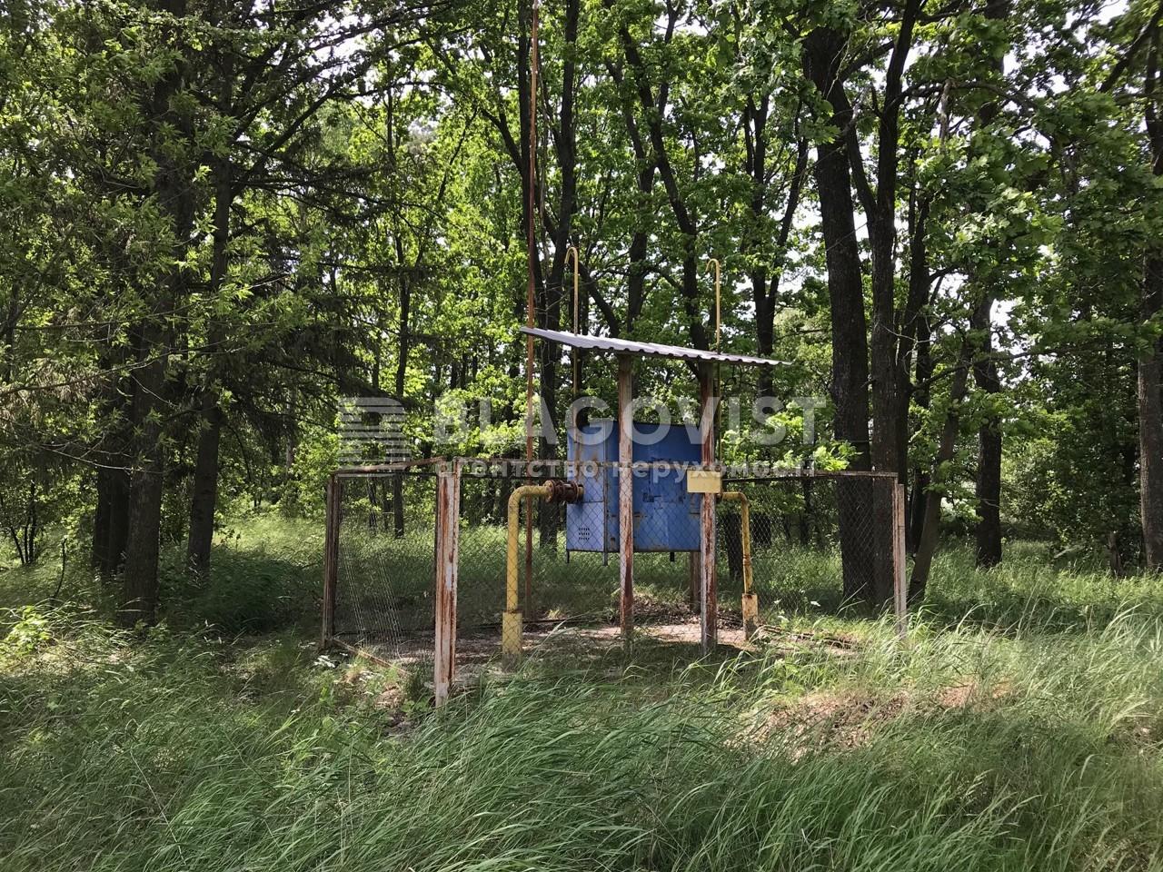 Дом D-36303, Леси Украинки, Музычи - Фото 17