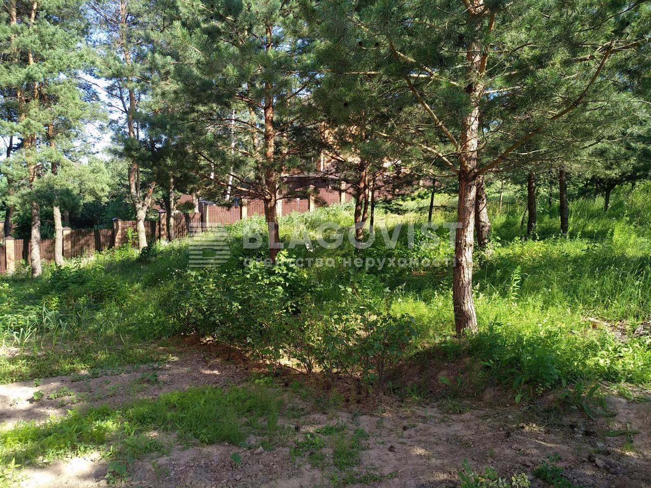 Земельный участок P-28267, Лисенко, Вита-Почтовая - Фото 5