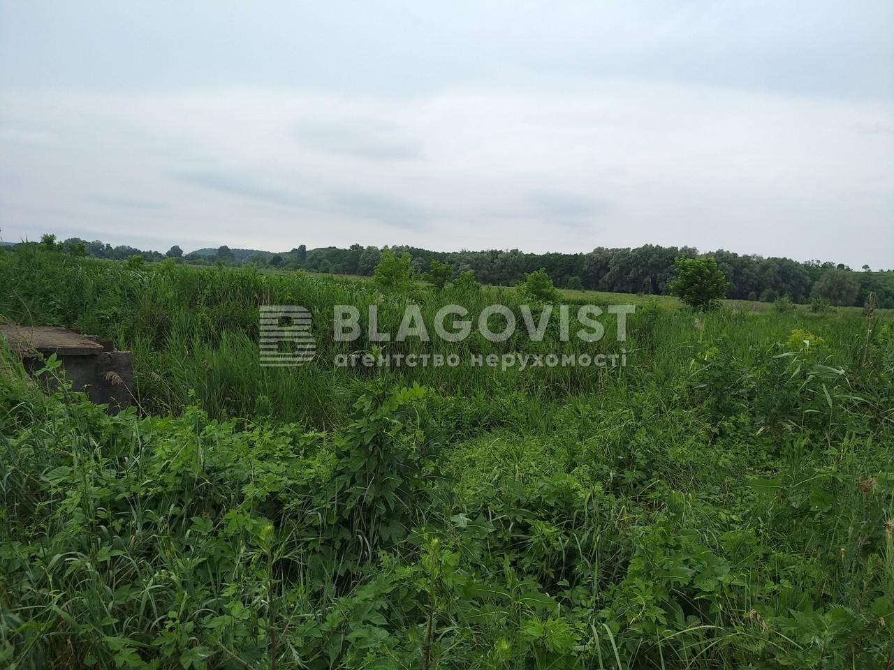 Земельный участок R-23762, Старые Безрадичи - Фото 1