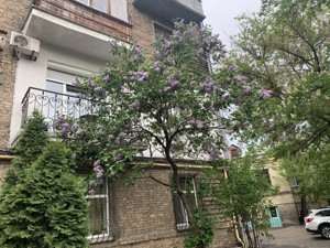 Офис, Хорива пер., Киев, B-54538 - Фото 18