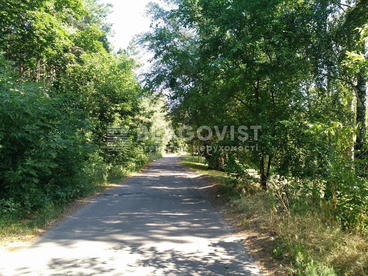 Дом P-28385, Набережая, Лебедевка (Вышгородский) - Фото 53
