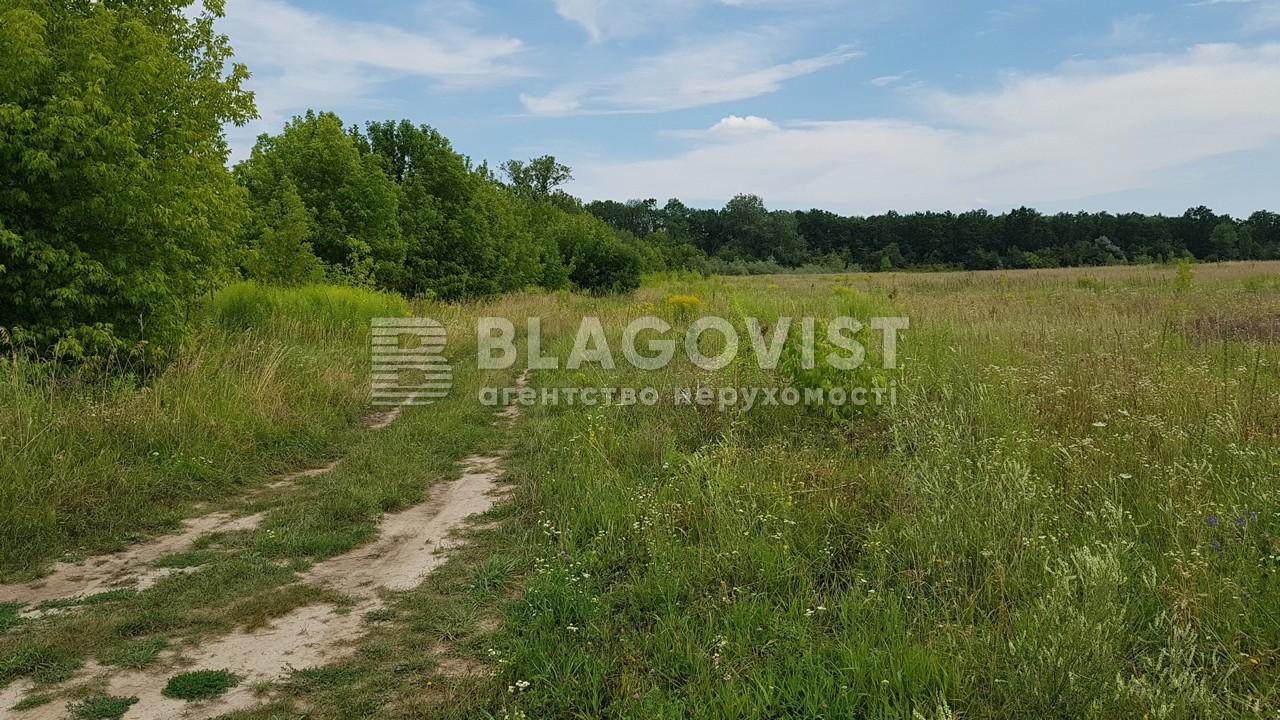 Земельный участок H-47726, Березовка - Фото 1
