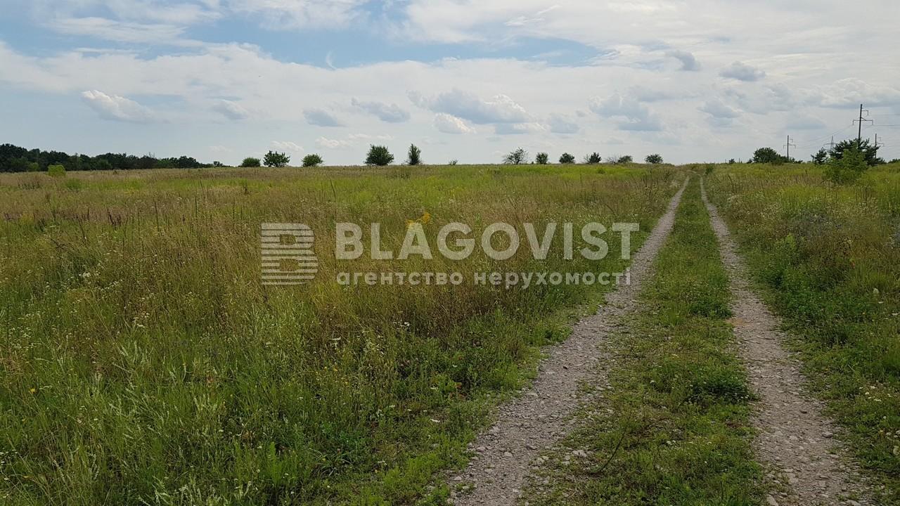 Земельный участок H-47727, Севериновка (Макаровский) - Фото 1