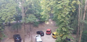 Квартира Джона Маккейна (Кудри Ивана), 37, Киев, E-39131 - Фото 16