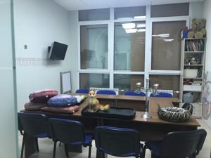 Нежилое помещение, Чавдар Елизаветы, Киев, E-39899 - Фото3
