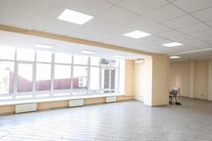 Нежилое помещение, Набережно-Крещатицкая, Киев, Z-332916 - Фото 5