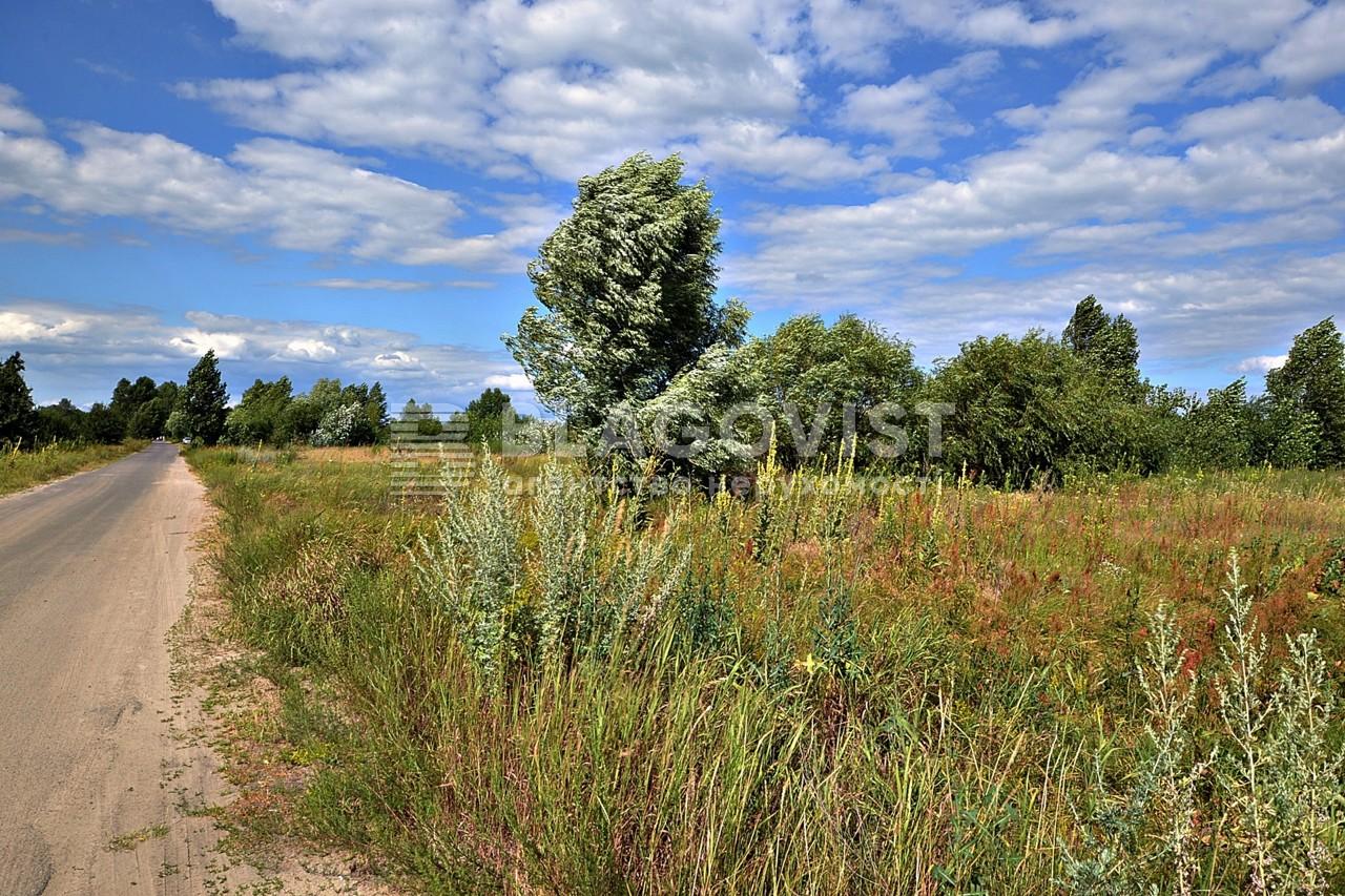 Земельный участок E-39938, Новоселки (Вышгородский) - Фото 10
