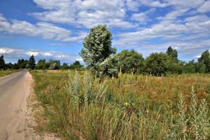 Земельный участок Новоселки (Вышгородский), E-39938 - Фото 10