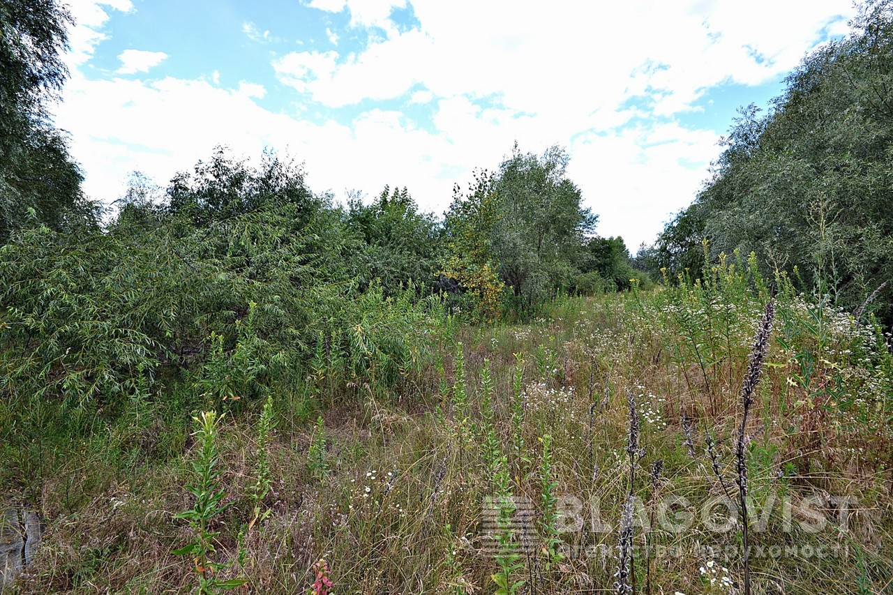Земельный участок E-39938, Новоселки (Вышгородский) - Фото 5