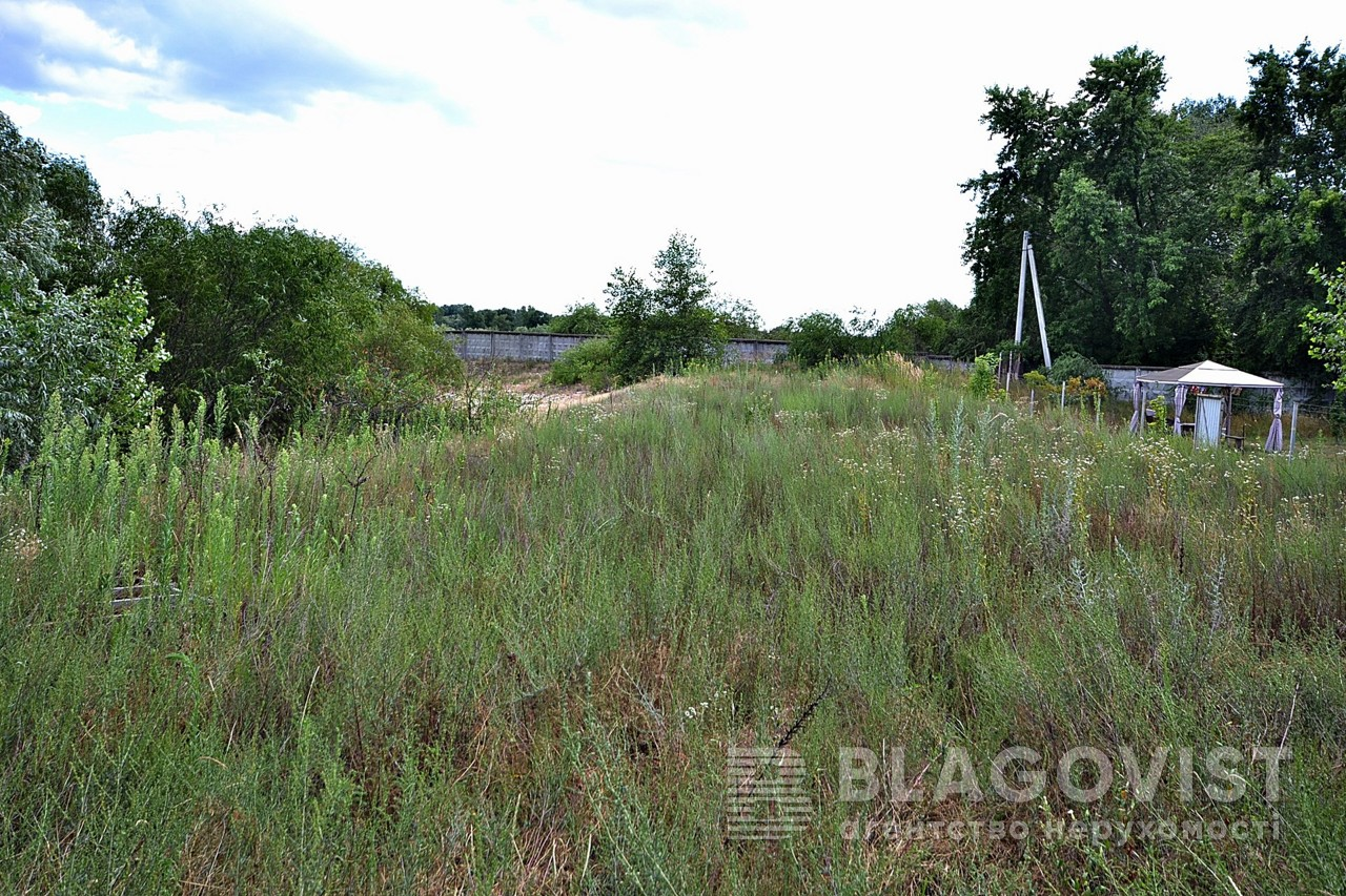 Земельный участок E-39938, Новоселки (Вышгородский) - Фото 6