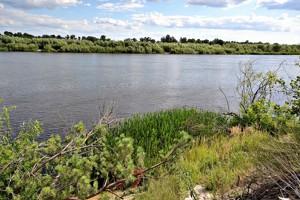 Земельна ділянка Новосілки (Вишгородський), E-39938 - Фото