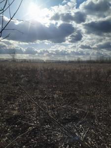 Земельный участок Крюковщина, P-28630 - Фото 5