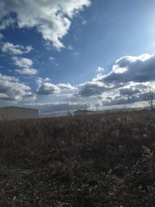 Земельный участок Крюковщина, P-28630 - Фото 4