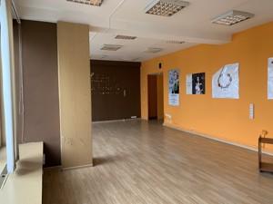 Офис, Хмельницкого Богдана, Киев, D-36536 - Фото 5