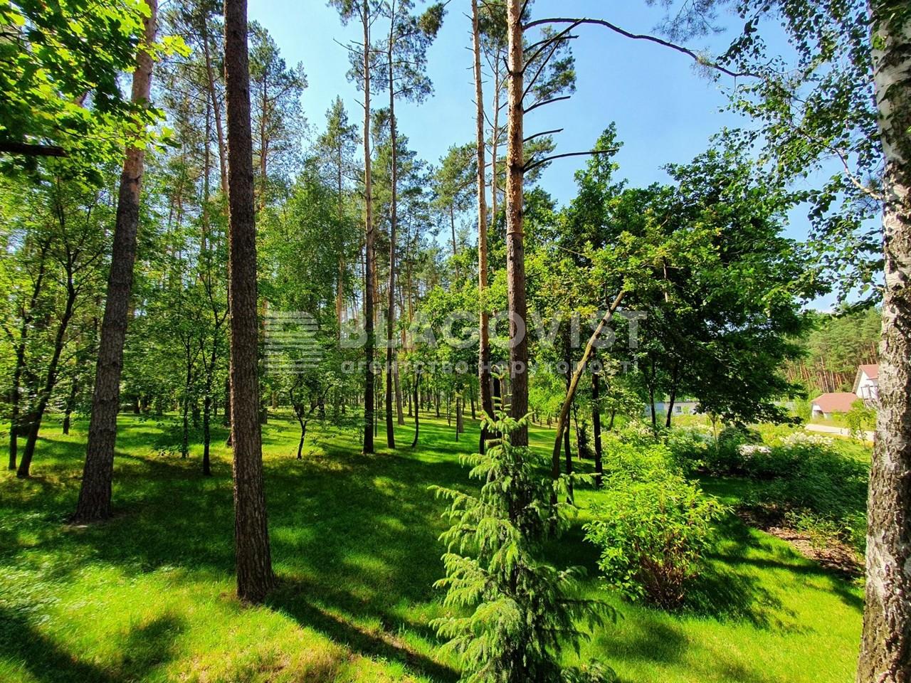Земельный участок P-28502, Осенняя, Стоянка - Фото 11