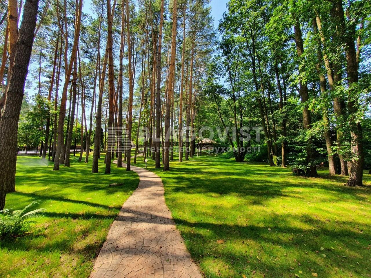 Земельный участок P-28502, Осенняя, Стоянка - Фото 9