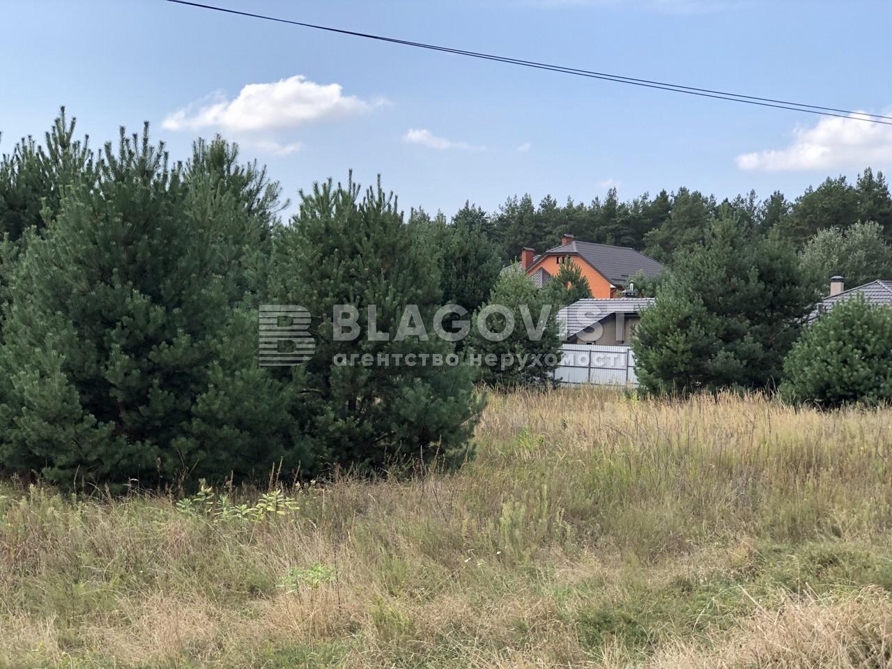 Земельный участок F-43814, Соловьиная, Процев - Фото 3