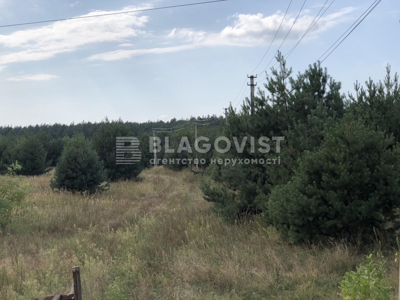 Земельный участок F-43814, Соловьиная, Процев - Фото 2