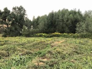 Земельный участок Ирпень, R-35243 - Фото 2