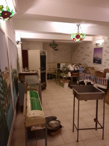 Нежилое помещение, Довженко, Киев, Z-704010 - Фото 8