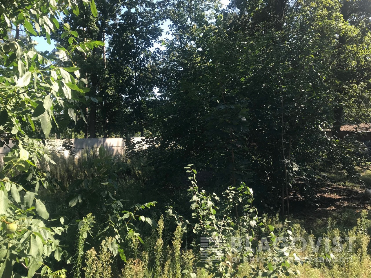 Дом M-37999, Пушкинская, Буча (город) - Фото 17