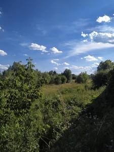 Земельный участок Пушкина, Софиевская Борщаговка, P-28628 - Фото